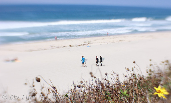 Carlsbad State Beach | Lensbaby Composer Pro
