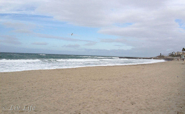 Carlsbad State Beach on a windy winter day